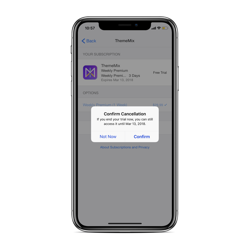 confirm-apps-auto-subscription-iphone