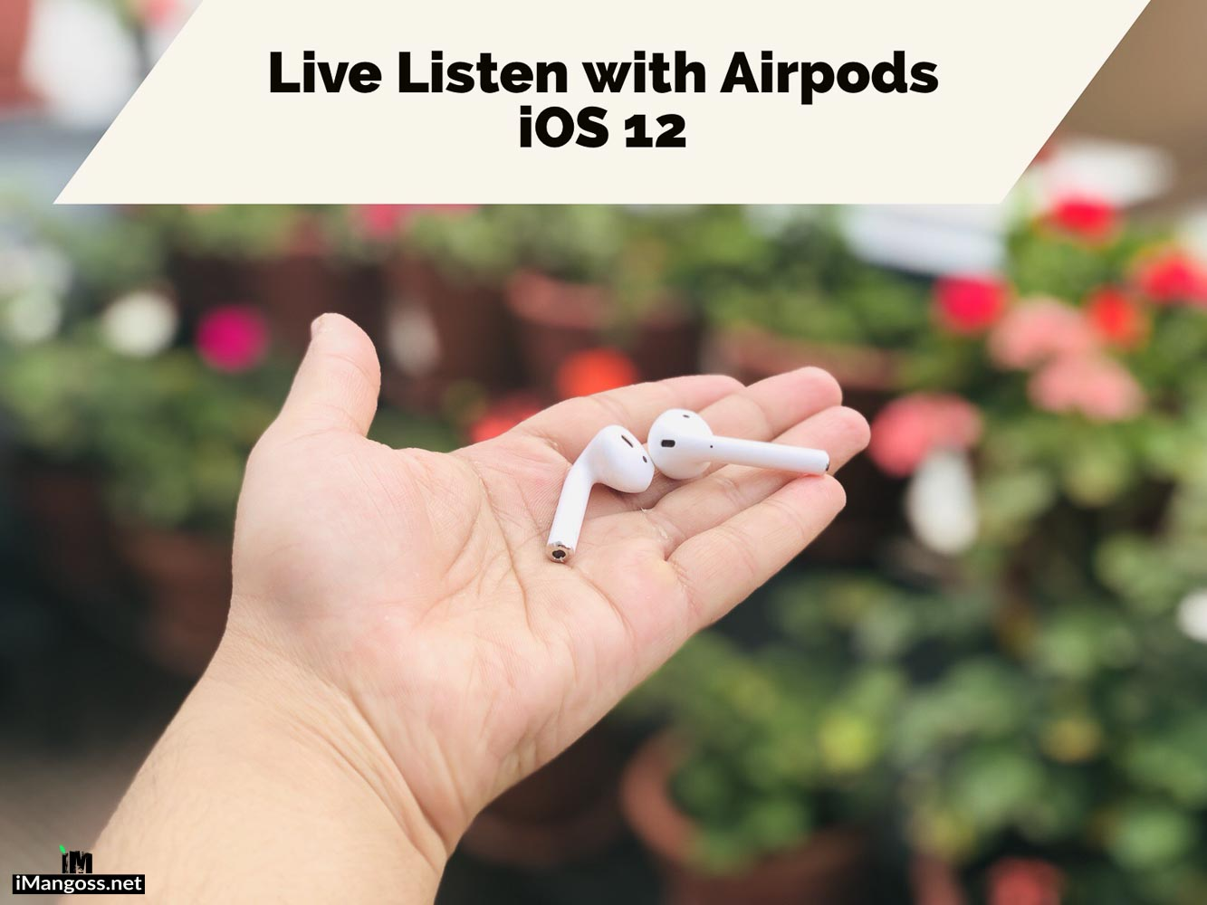 live listen feature in ios 12
