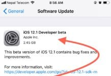 ios 12.1 developer beta